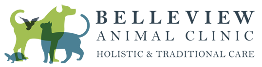 Belleview Animal Clinic